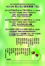 Ajisai_2013dm_happy_green